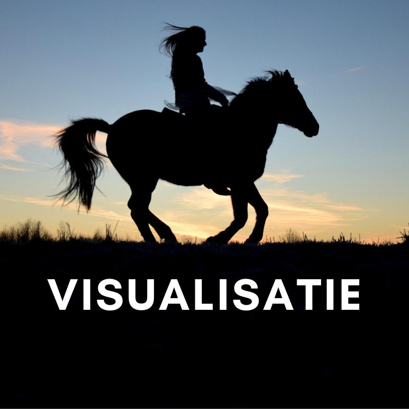 Visualisatie